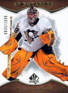 Marc-Andre Fleury - 113